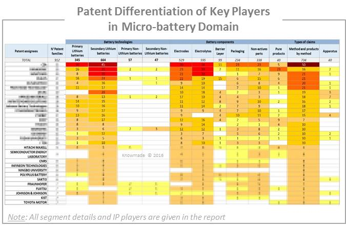 Patent Differentiation of Key Players in Microbattery Domain